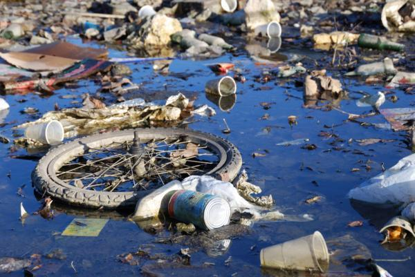 water and air pollution Water pollution occurs when water is contaminated with chemicals and foreign substances that are harmful to humans, plants and animals water pollutants include chemical contamination from waste.
